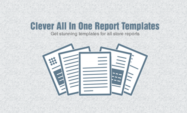 Clever-All-in-One-Report-Template-768x464 (2)