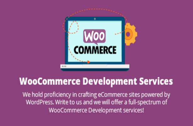 What Makes WooCommerce the Best Ecommerce Platform
