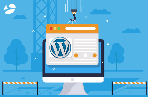 Why-Go-for-WordPress-to-Redesign-Your-Business-Website